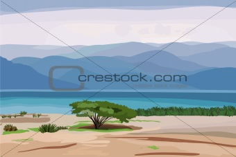 vector of the marine landscape against the backdrop of the mount