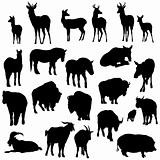 Set of deer, horses, goats, yaks, buffalos and pig   silhouettes