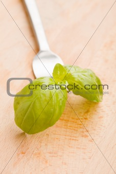 Fork with basil leaves