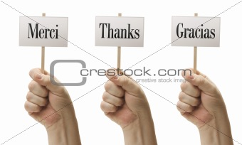 Three Signs In Male Fists Saying Merci, Thanks and Gracias Isolated on a White Background.