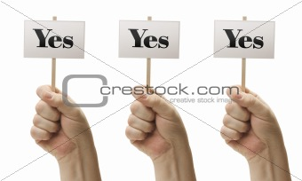 Three Signs In Male Fists Saying Yes, Yes and Yes Isolated on a White Background.