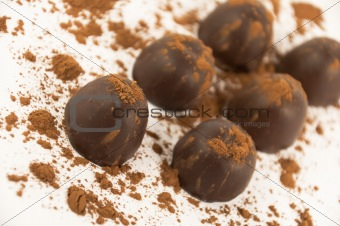 Chocolates sprinkled with cocoa, isolated on a white background