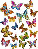 Set of beautiful multicolored butterflies