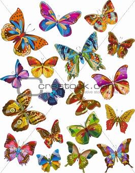 Set of beautiful multicolored butterflies