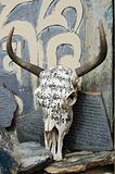 Yak skull in Tibet