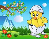 Meadow with cute chicken in egg