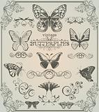 butterflies and design elements