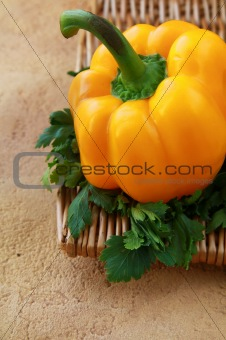 one yellow pepper and parsley in a vintage antique background