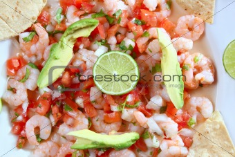 camaron shrimp ceviche raw seafood salad Mexico