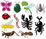 cartoon insect icon