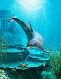 Ocean world 3