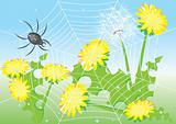 Cartoon spider and dandelions. 