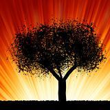 A tree at sunrise. EPS 8
