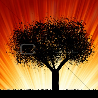 A tree at sunrise. EPS 8