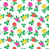 Background, flowers rose