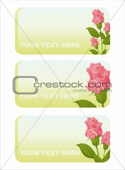 beautiful roses banners