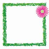grass and flower photo frame