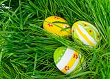Easter eggs are colored in green spring grass