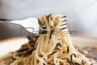 close up shot of mushroom spaghetti
