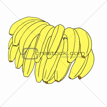 A vector stylized bananas