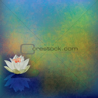 abstract floral illustration with lotus on green