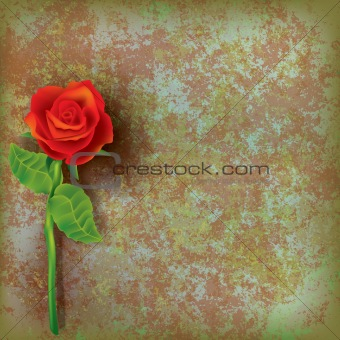abstract floral illustration with red rose