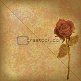 abstract floral illustration with rose on dirty background
