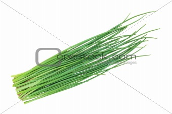green onion chives isolated on white