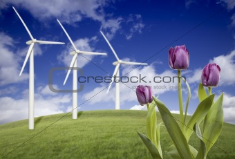 Wind Turbines Against Dramatic Sky, Clouds and Violets in the Foreground.