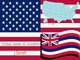 hawaii state illustration