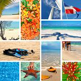 Tropical collage. Exotic travel.