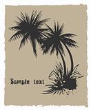 Palm. Vector grunge