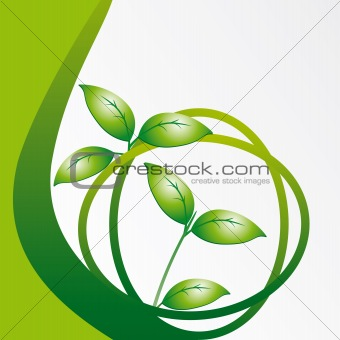 A branch with leaves on a green background