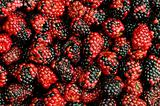 Lots of berries arranged at the background