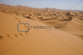 Sahara Desert, merzouga