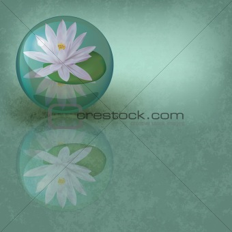 abstract grunge illustration with lotus