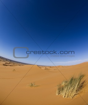 Desert dunes in Morocco