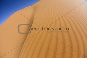Landscape of desert