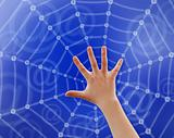 Hand in web
