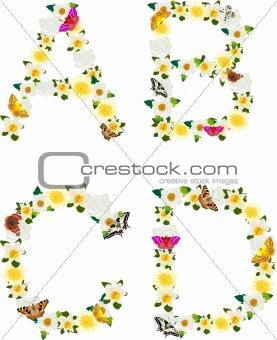 Alphabet of flowers and butterflies-A, B, C, D.