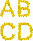 Alphabet of yellow flowers and butterflies-A, B, C, D.