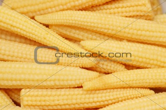 Baby corn cobs arranged as a background