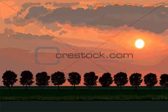 vector landscape with bright beautiful sunset
