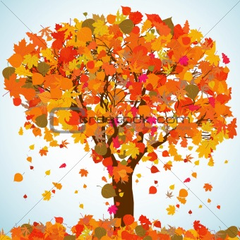 Beautiful autumn tree for your design. EPS 8