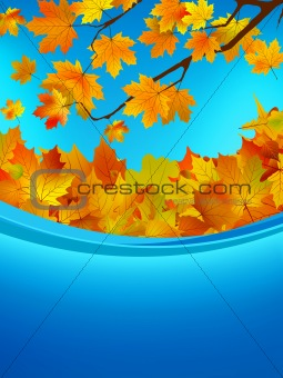 Autumn card of colored leafs. EPS 8