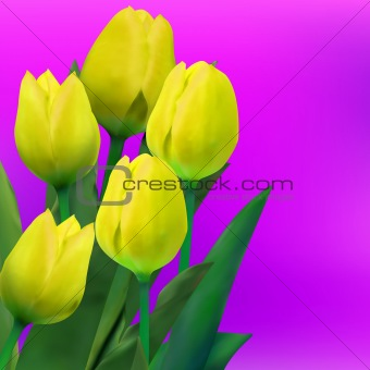 Bunch of tulip flowers on the table. EPS 8