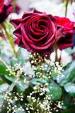 Red roses and other flowers in arrangement
