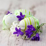 Easter eggs and spring flowers on wood background