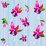 vector background with flower fuchsia