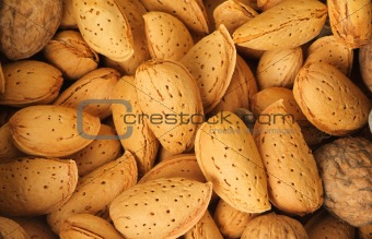 A pile of almond nuts. macro